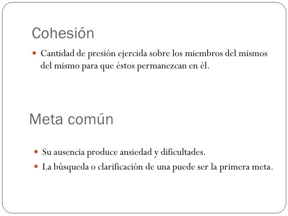 Cohesión Cantidad de presión ejercida sobre los miembros del mismos del mismo para que éstos permanezcan en él.