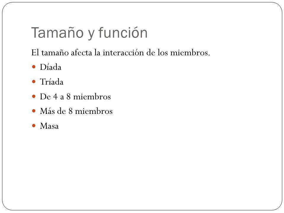 Tamaño y función El tamaño afecta la interacción de los miembros.