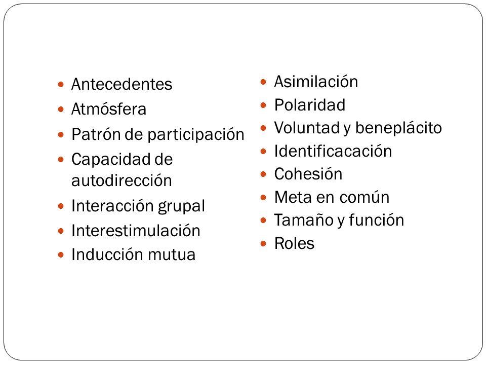 Antecedentes Atmósfera Patrón de participación Capacidad de autodirección Interacción grupal Interestimulación Inducción mutua Asimilación Polaridad Voluntad y beneplácito Identificacación Cohesión Meta en común Tamaño y función Roles