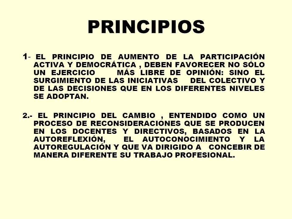 PRINCIPIOS 1 - EL PRINCIPIO DE AUMENTO DE LA PARTICIPACIÓN ACTIVA Y DEMOCRÁTICA, DEBEN FAVORECER NO SÓLO UN EJERCICIO MÁS LIBRE DE OPINIÓN: SINO EL SU