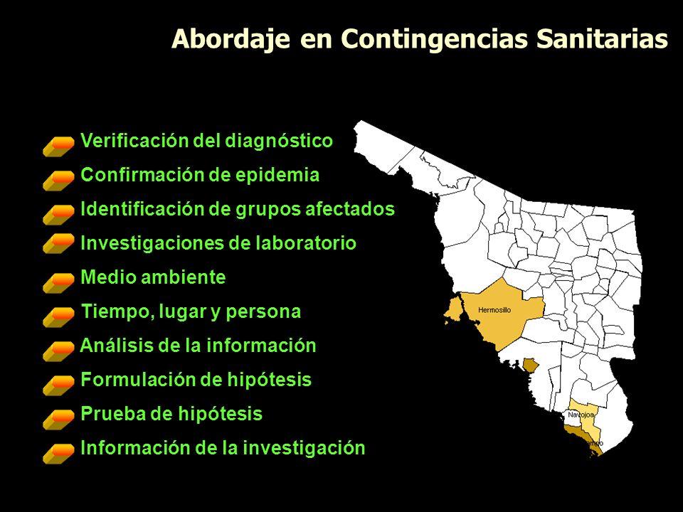 Verificación del diagnóstico Confirmación de epidemia Identificación de grupos afectados Investigaciones de laboratorio Medio ambiente Tiempo, lugar y