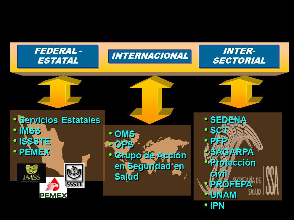 INTER- SECTORIAL INTER- SECTORIAL FEDERAL - ESTATAL FEDERAL - ESTATAL INTERNACIONAL OMS OPS Grupo de Acción en Seguridad en Salud OMS OPS Grupo de Acc