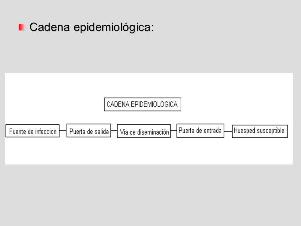 Cadena epidemiológica: