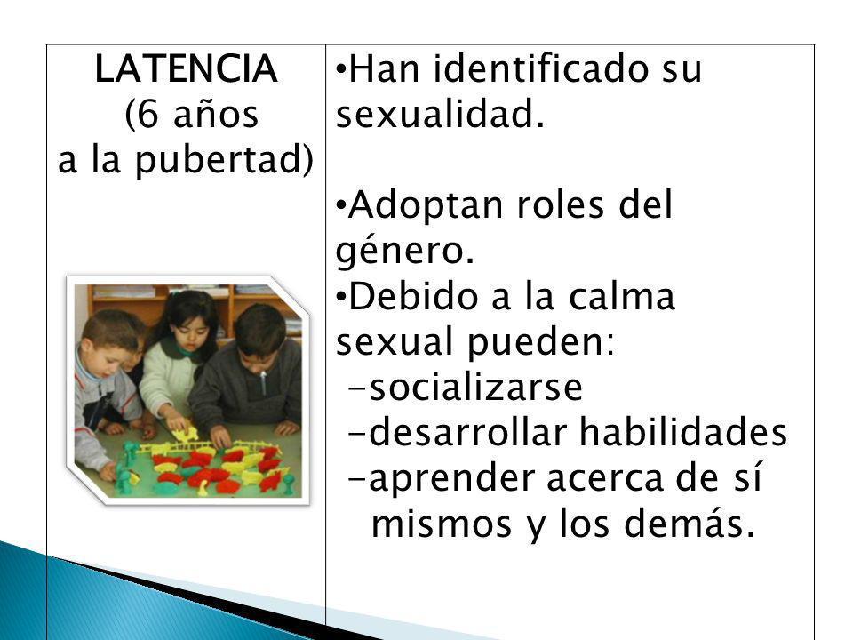 LATENCIA (6 años a la pubertad) Han identificado su sexualidad.
