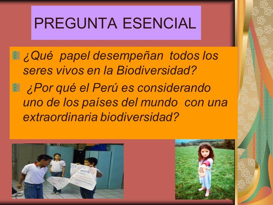 PREGUNTA ESENCIAL ¿Qué papel desempeñan todos los seres vivos en la Biodiversidad? ¿Por qué el Perú es considerando uno de los países del mundo con un