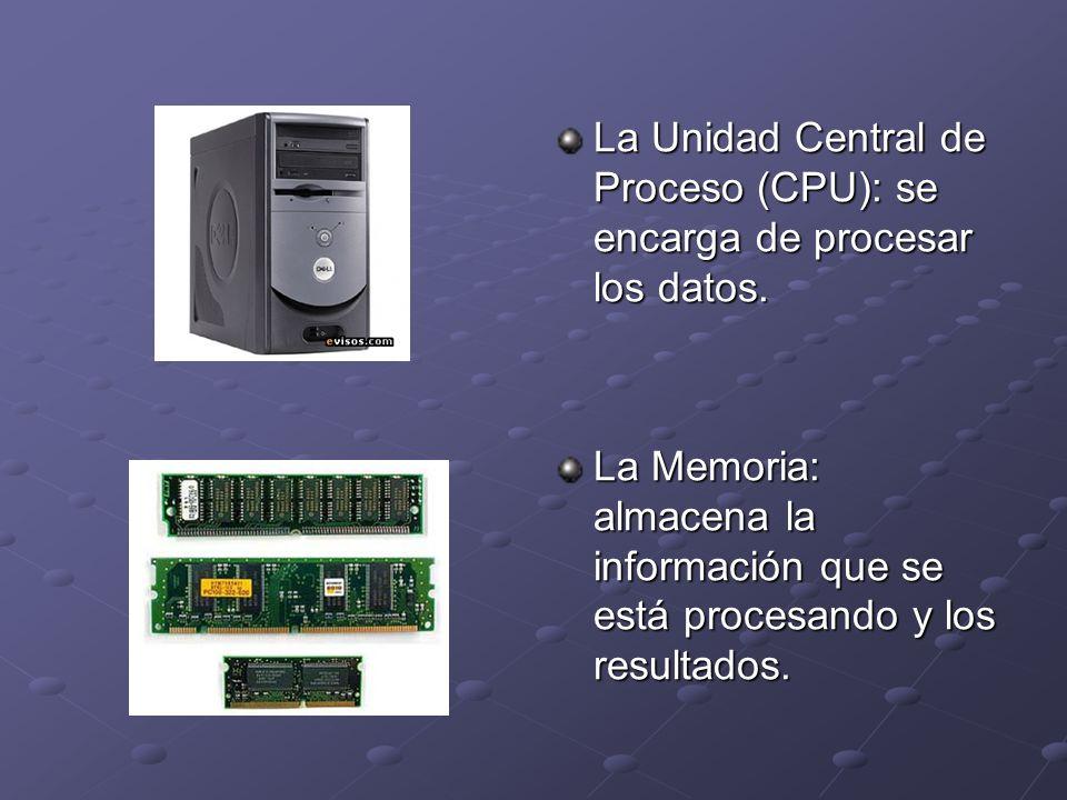 La Unidad Central de Proceso (CPU): se encarga de procesar los datos. La Memoria: almacena la información que se está procesando y los resultados.