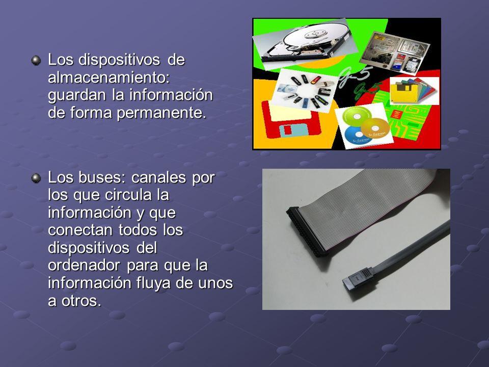 Los dispositivos de almacenamiento: guardan la información de forma permanente. Los buses: canales por los que circula la información y que conectan t