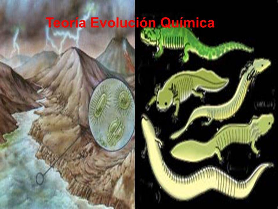 2.- TEORÍA DE EVOLUCIÓN QUÍMICA El metano, amoniaco, hidrogeno, vapor de agua y dióxido de carbono Alexander Oparin