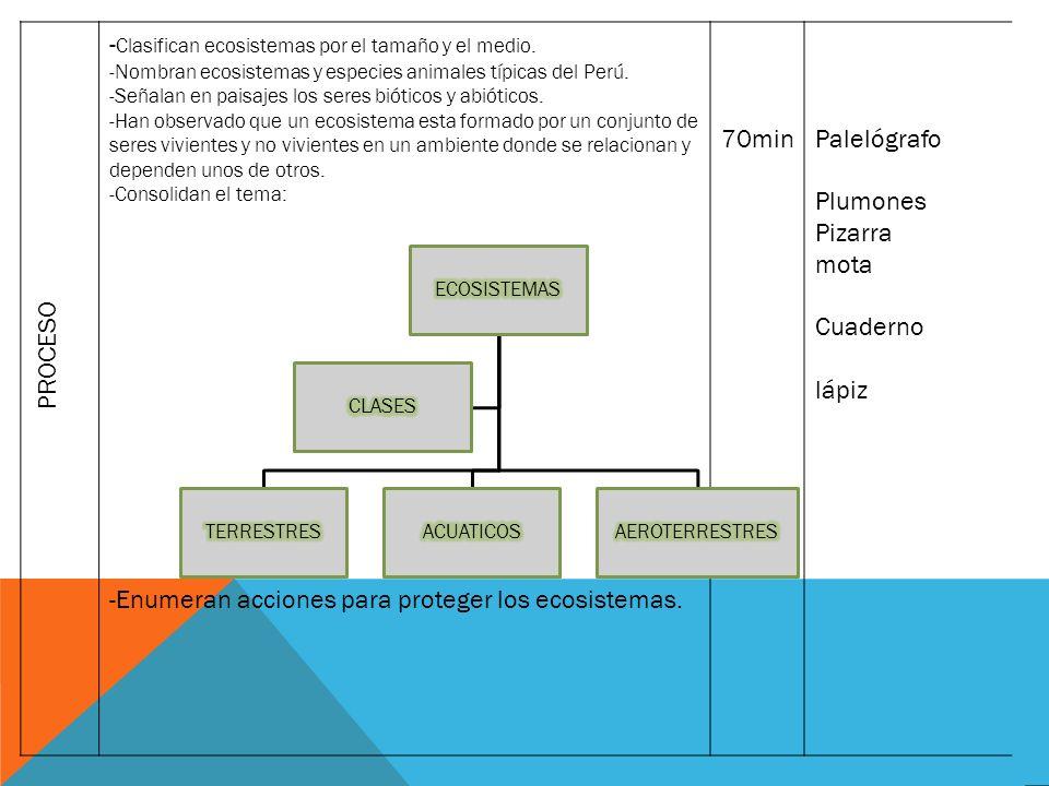 PROCESO - Clasifican ecosistemas por el tamaño y el medio. -Nombran ecosistemas y especies animales típicas del Perú. -Señalan en paisajes los seres b