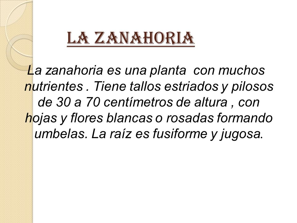 LA ZANAHORIA LA ZANAHORIA La zanahoria es una planta con muchos nutrientes.