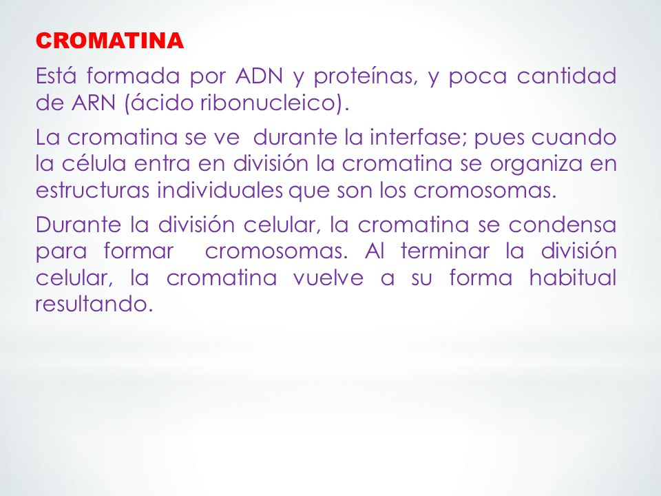 CROMATINA Está formada por ADN y proteínas, y poca cantidad de ARN (ácido ribonucleico).