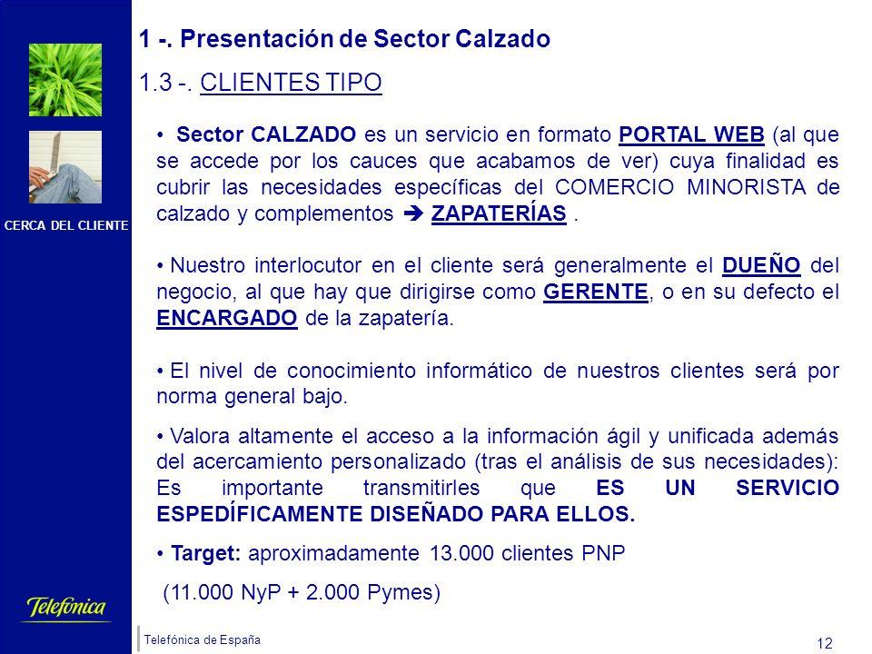 CERCA DEL CLIENTE Telefónica de España 11 1 -. Presentación de Sector Calzado 1.2 -. UBICACIÓN ( si ya se es cliente de Soluciones ADSL) Al pulsar sob
