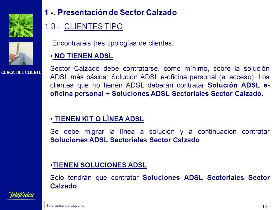 CERCA DEL CLIENTE Telefónica de España 12 Sector CALZADO es un servicio en formato PORTAL WEB (al que se accede por los cauces que acabamos de ver) cuya finalidad es cubrir las necesidades específicas del COMERCIO MINORISTA de calzado y complementos ZAPATERÍAS.