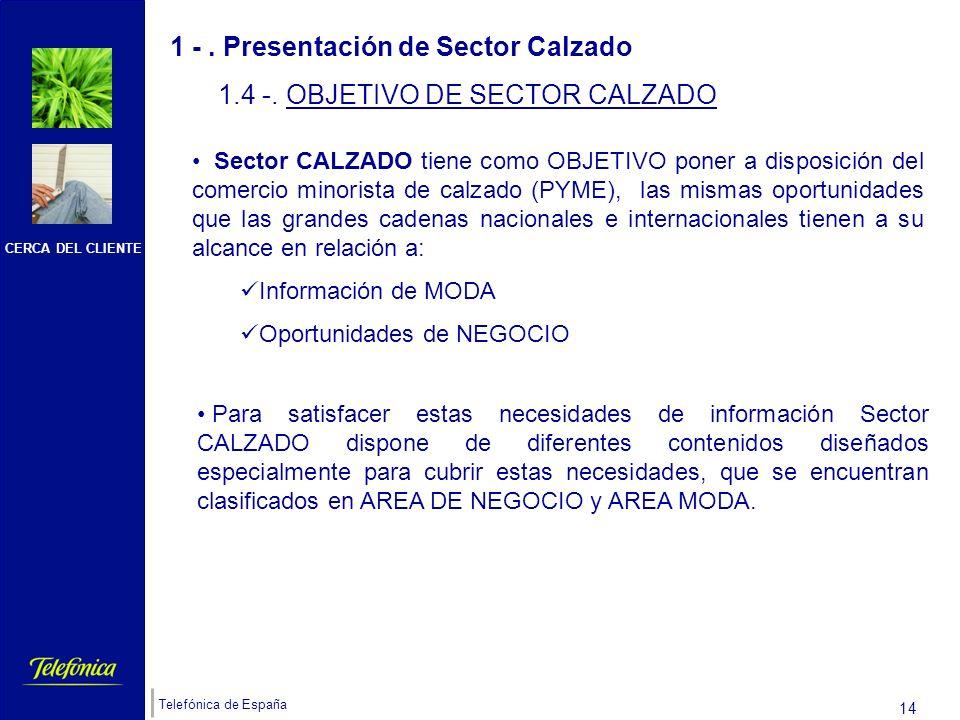 CERCA DEL CLIENTE Telefónica de España 13 Encontraréis tres tipologías de clientes: NO TIENEN ADSL Sector Calzado debe contratarse, como mínimo, sobre la solución ADSL más básica: Solución ADSL e-oficina personal (el acceso).