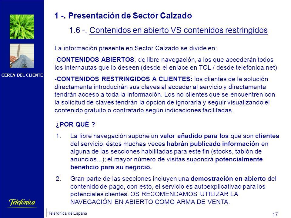 CERCA DEL CLIENTE Telefónica de España 16 1 -. Presentación de Sector Calzado 1.5 -. FUNCIONALIDADES PRINCIPALES AREA NEGOCIO Gran Buscador: la Base d