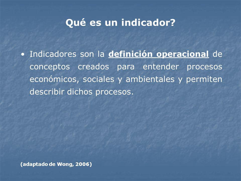 Qué es un indicador? Indicadores son la definición operacional de conceptos creados para entender procesos económicos, sociales y ambientales y permit