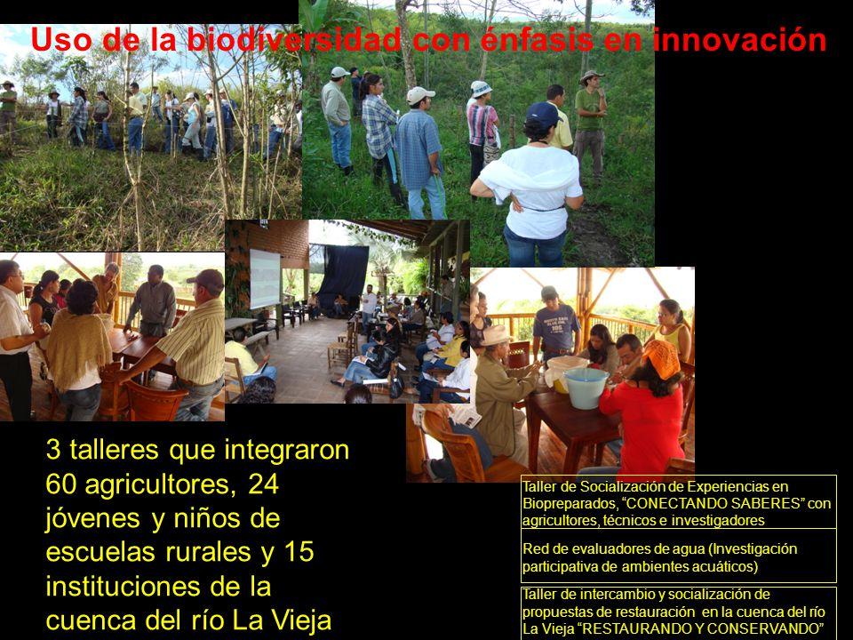 Red de evaluadores de agua (Investigación participativa de ambientes acuáticos) Uso de la biodiversidad con énfasis en innovación Taller de Socializac