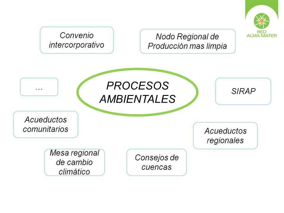 Convenio intercorporativo SIRAP Nodo Regional de Producción mas limpia Consejos de cuencas Acueductos comunitarios Acueductos regionales … PROCESOS AM