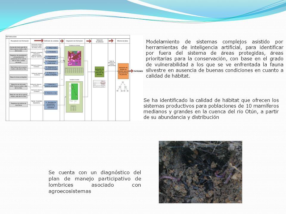 Se cuenta con un d iagnóstico del plan de manejo participativo de lombrices asociado con agroecosistemas Se ha identificado la calidad de hábitat que