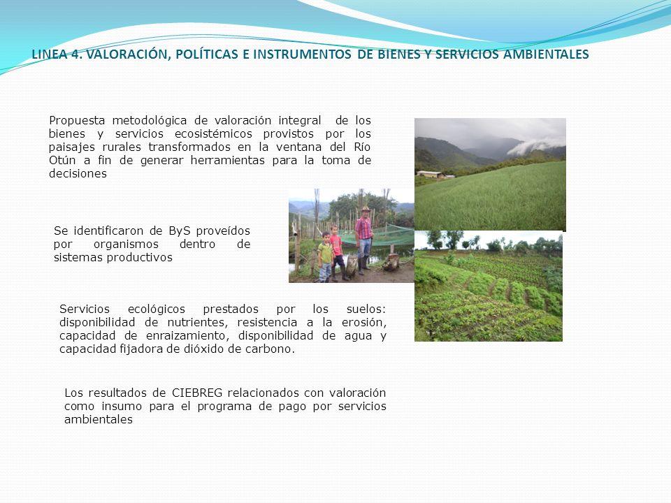 LINEA 4. VALORACIÓN, POLÍTICAS E INSTRUMENTOS DE BIENES Y SERVICIOS AMBIENTALES Propuesta metodológica de valoración integral de los bienes y servicio