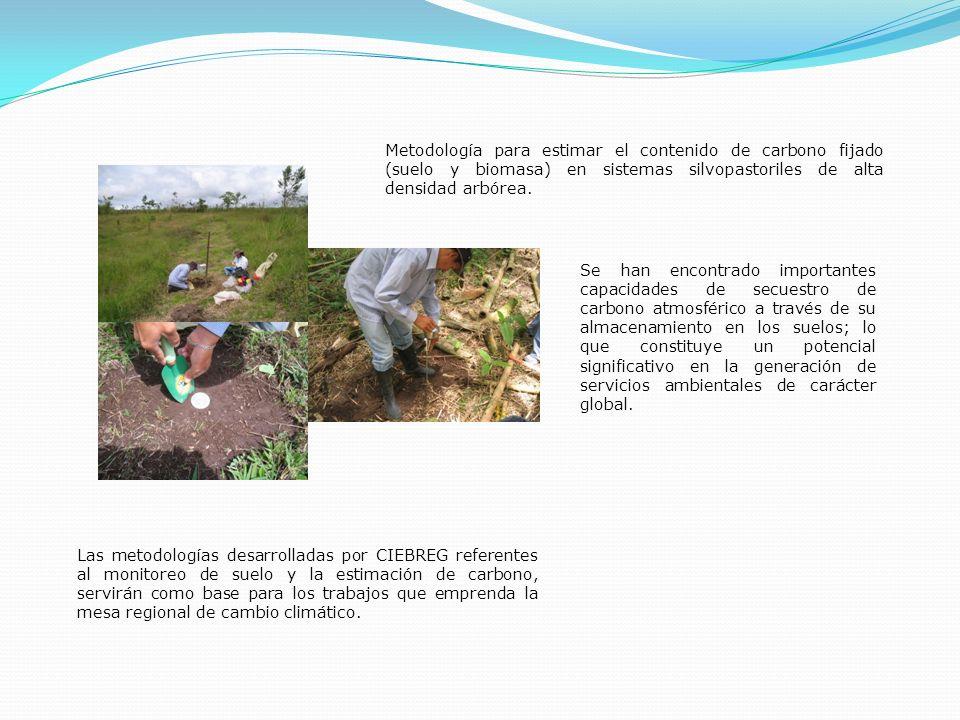 Se han encontrado importantes capacidades de secuestro de carbono atmosférico a través de su almacenamiento en los suelos; lo que constituye un potenc