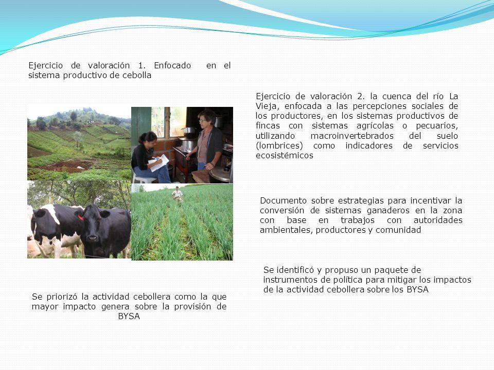 Ejercicio de valoración 1. Enfocado en el sistema productivo de cebolla Ejercicio de valoración 2. la cuenca del río La Vieja, enfocada a las percepci