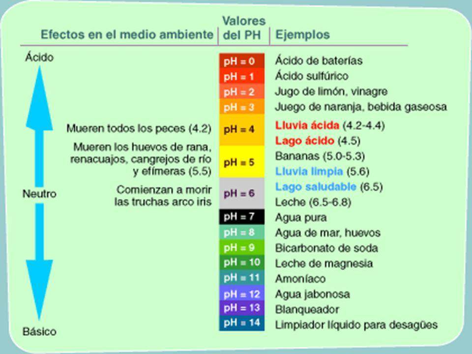 Tal como puedes observar en la escala de pH anterior, el agua pura tiene un valor de pH de 7.