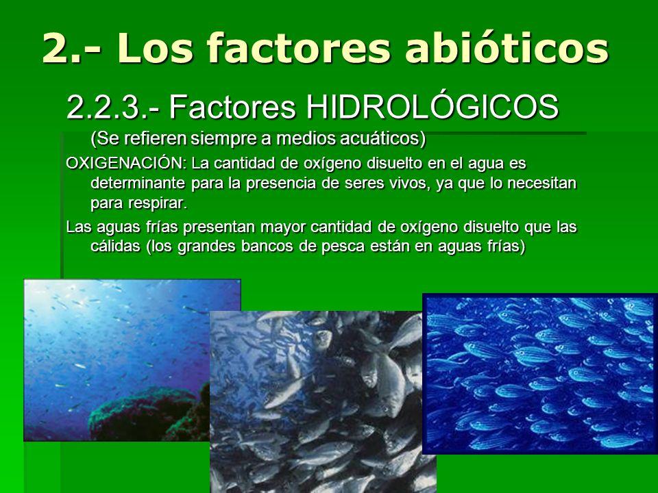 2.2.3.- Factores HIDROLÓGICOS (Se refieren siempre a medios acuáticos) OXIGENACIÓN: La cantidad de oxígeno disuelto en el agua es determinante para la