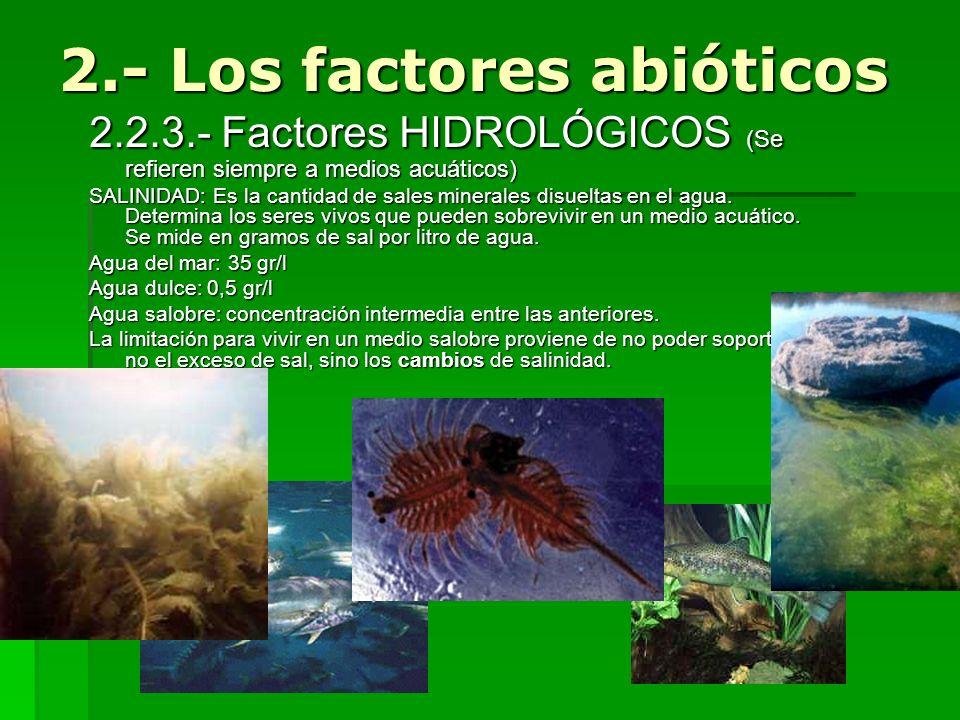 2.2.3.- Factores HIDROLÓGICOS (Se refieren siempre a medios acuáticos) SALINIDAD: Es la cantidad de sales minerales disueltas en el agua. Determina lo