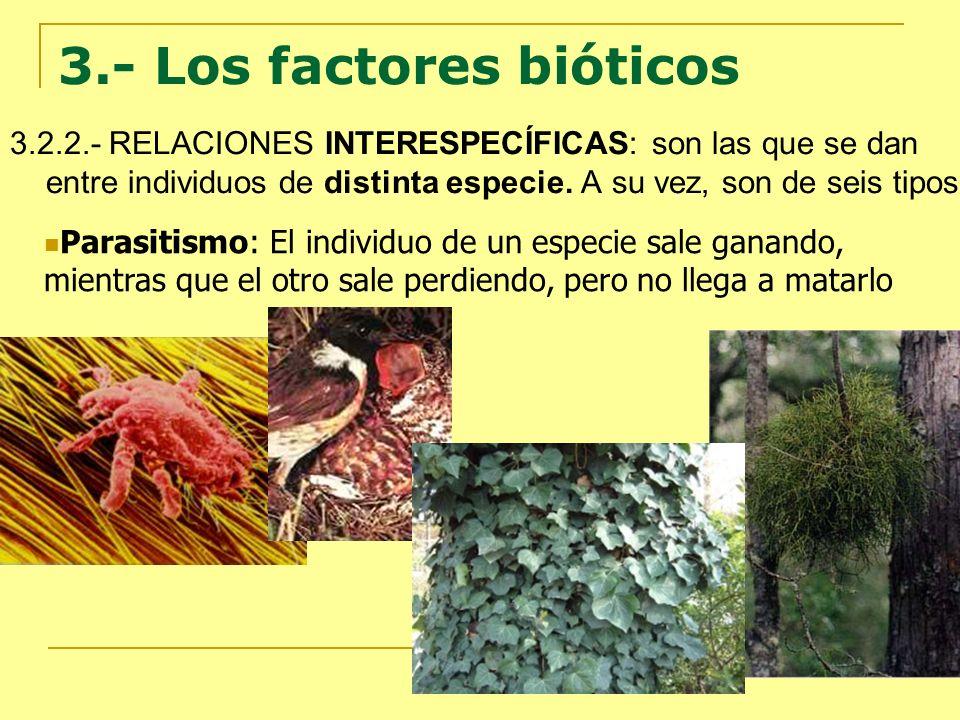 3.- Los factores bióticos 3.2.2.- RELACIONES INTERESPECÍFICAS: son las que se dan entre individuos de distinta especie. A su vez, son de seis tipos: P