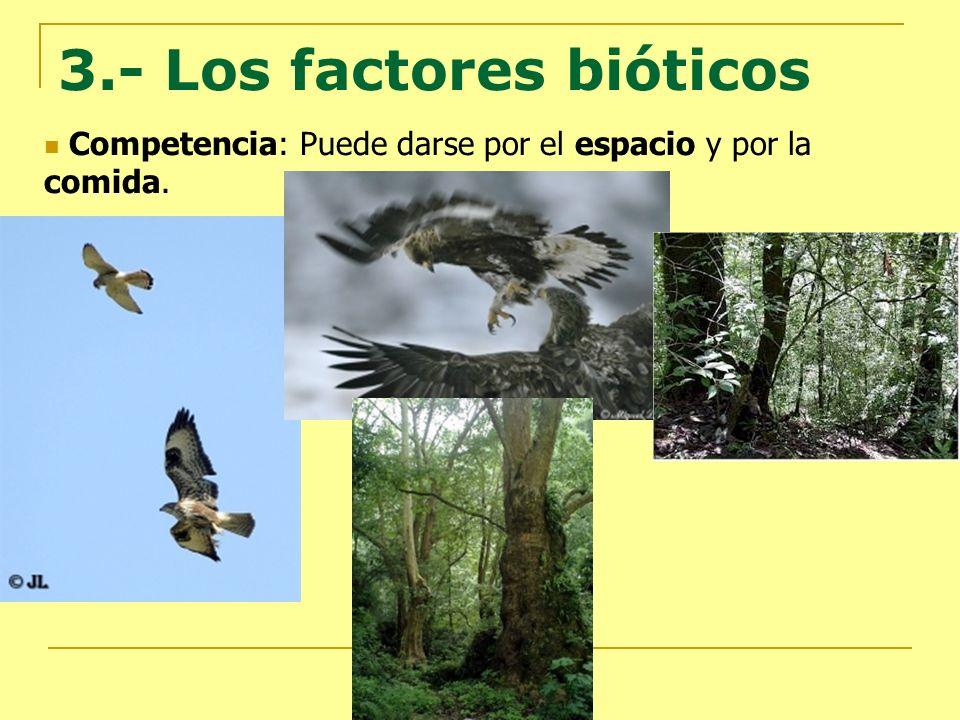 3.- Los factores bióticos Competencia: Puede darse por el espacio y por la comida.