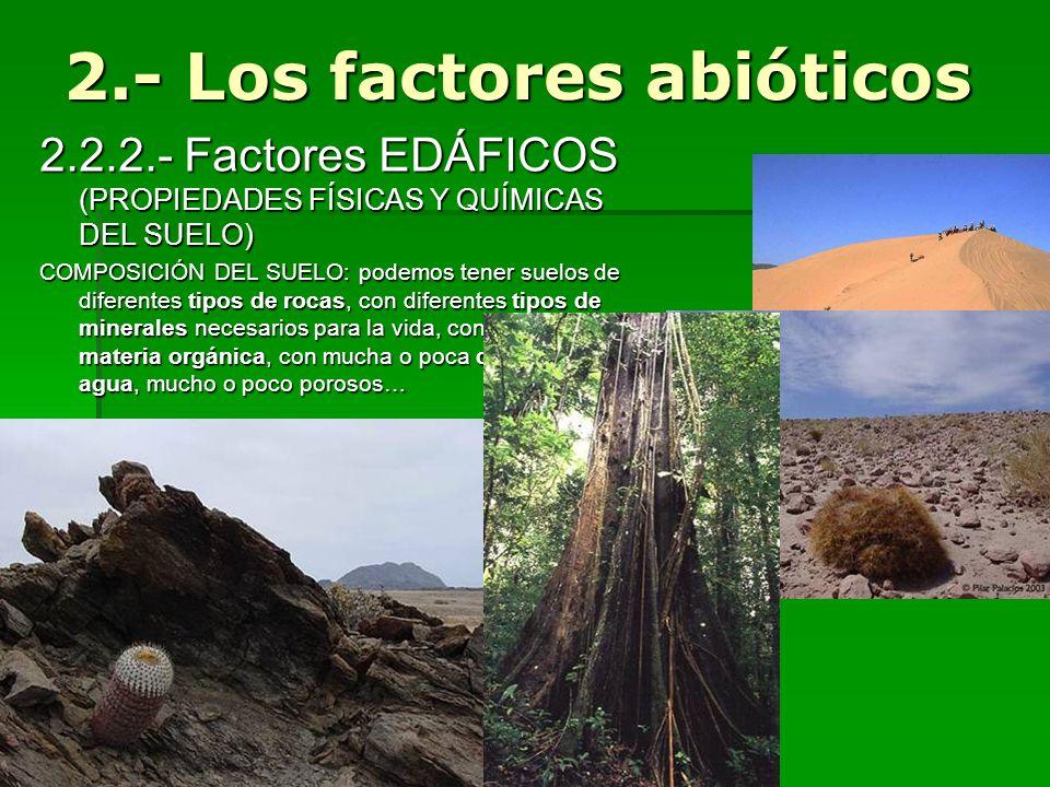 2.2.2.- Factores EDÁFICOS (PROPIEDADES FÍSICAS Y QUÍMICAS DEL SUELO) COMPOSICIÓN DEL SUELO: podemos tener suelos de diferentes tipos de rocas, con dif