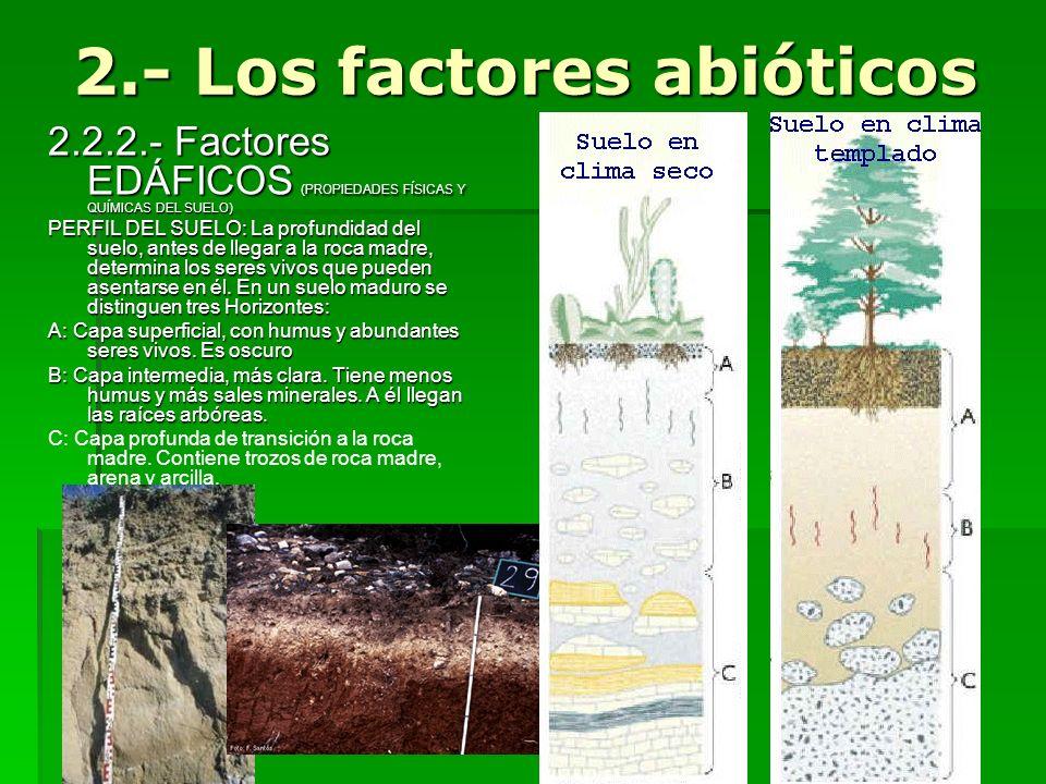 2.2.2.- Factores EDÁFICOS (PROPIEDADES FÍSICAS Y QUÍMICAS DEL SUELO) PERFIL DEL SUELO: La profundidad del suelo, antes de llegar a la roca madre, dete