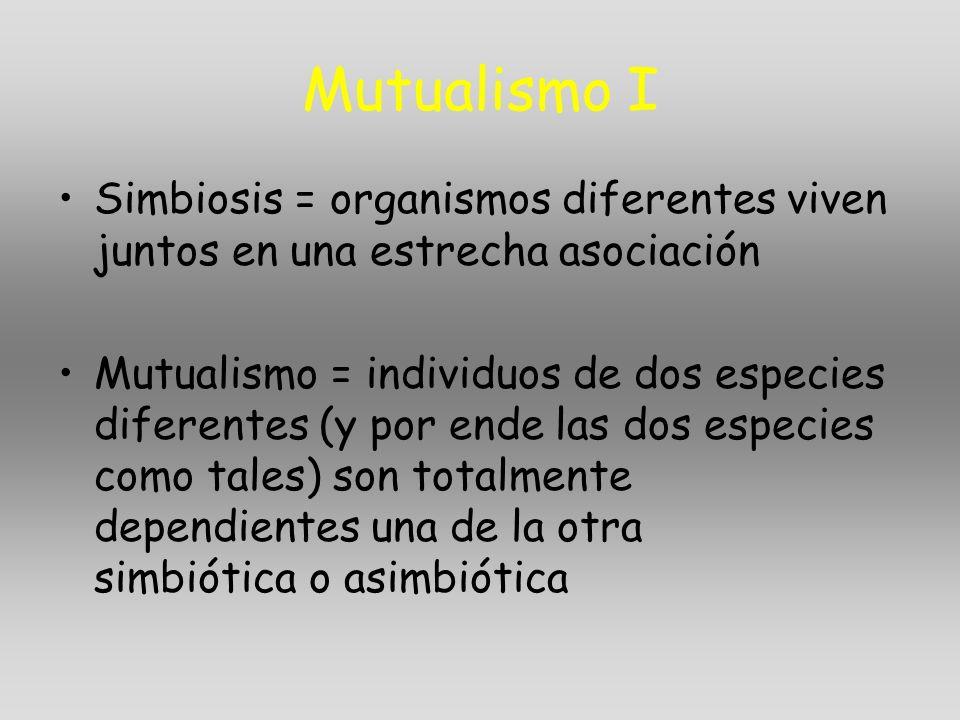 Mutualismo I Simbiosis = organismos diferentes viven juntos en una estrecha asociación Mutualismo = individuos de dos especies diferentes (y por ende