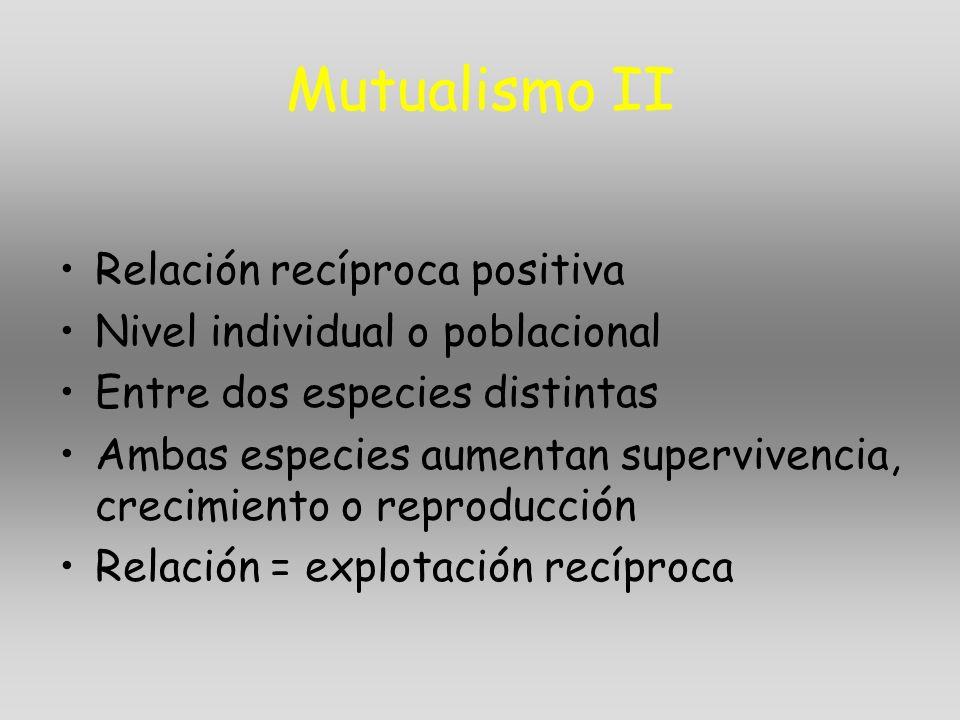 Mutualismo II Relación recíproca positiva Nivel individual o poblacional Entre dos especies distintas Ambas especies aumentan supervivencia, crecimien