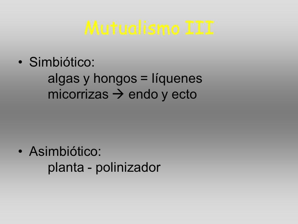 Mutualismo III Simbiótico: algas y hongos = líquenes micorrizas endo y ecto Asimbiótico: planta - polinizador