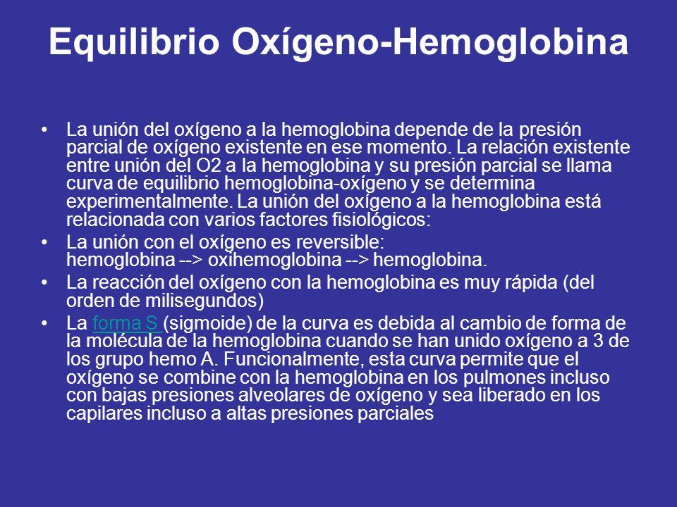 Equilibrio Oxígeno-Hemoglobina La unión del oxígeno a la hemoglobina depende de la presión parcial de oxígeno existente en ese momento.