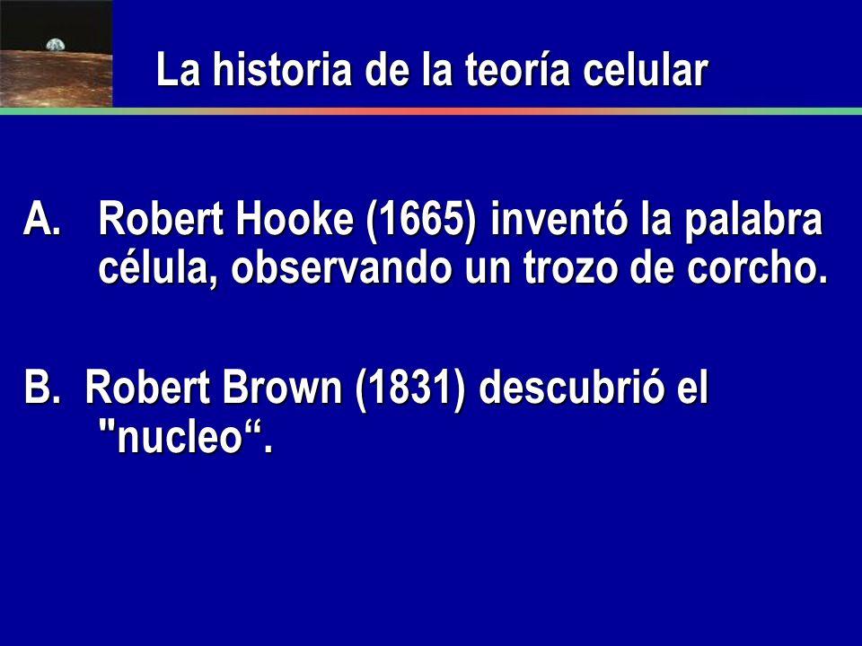 A.Robert Hooke (1665) inventó la palabra célula, observando un trozo de corcho. B. Robert Brown (1831) descubrió el