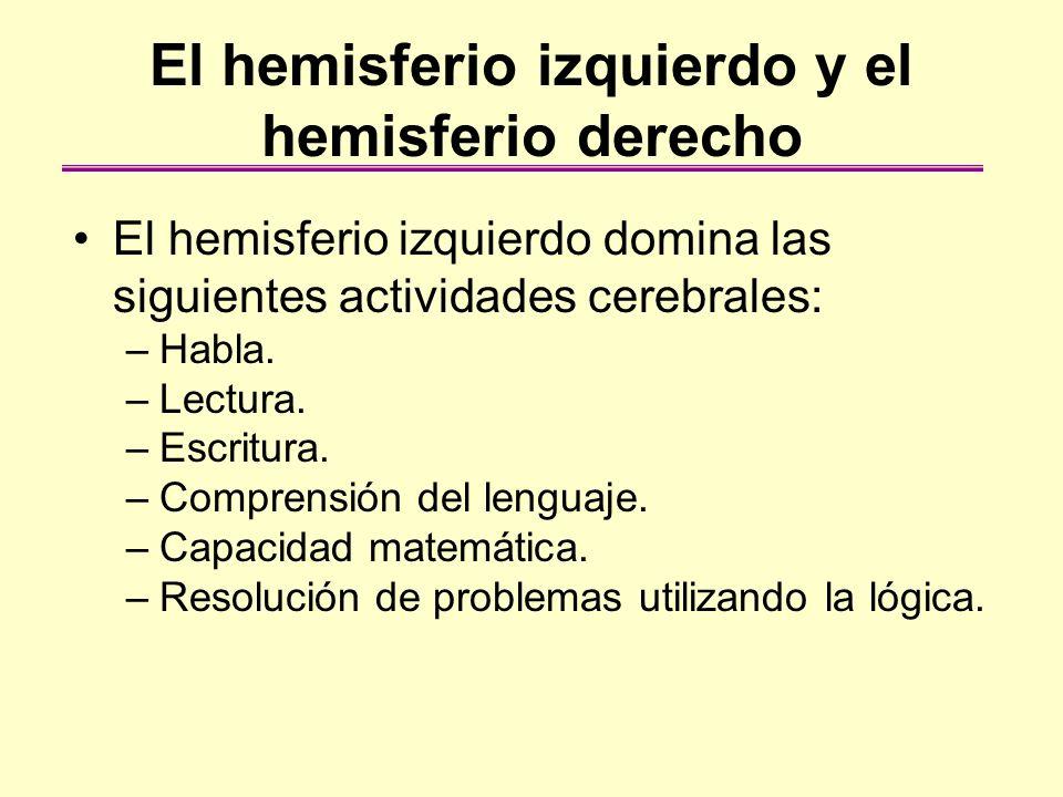 El hemisferio izquierdo y el hemisferio derecho El hemisferio izquierdo domina las siguientes actividades cerebrales: –Habla. –Lectura. –Escritura. –C