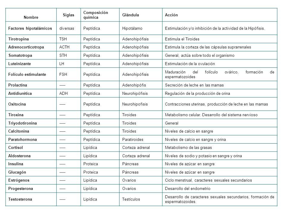 Nombre Siglas Composición química GlándulaAcción Factores hipotalámicosdiversasPeptídicaHipotálamoEstimulación y/o inhibición de la actividad de la Hipófisis.