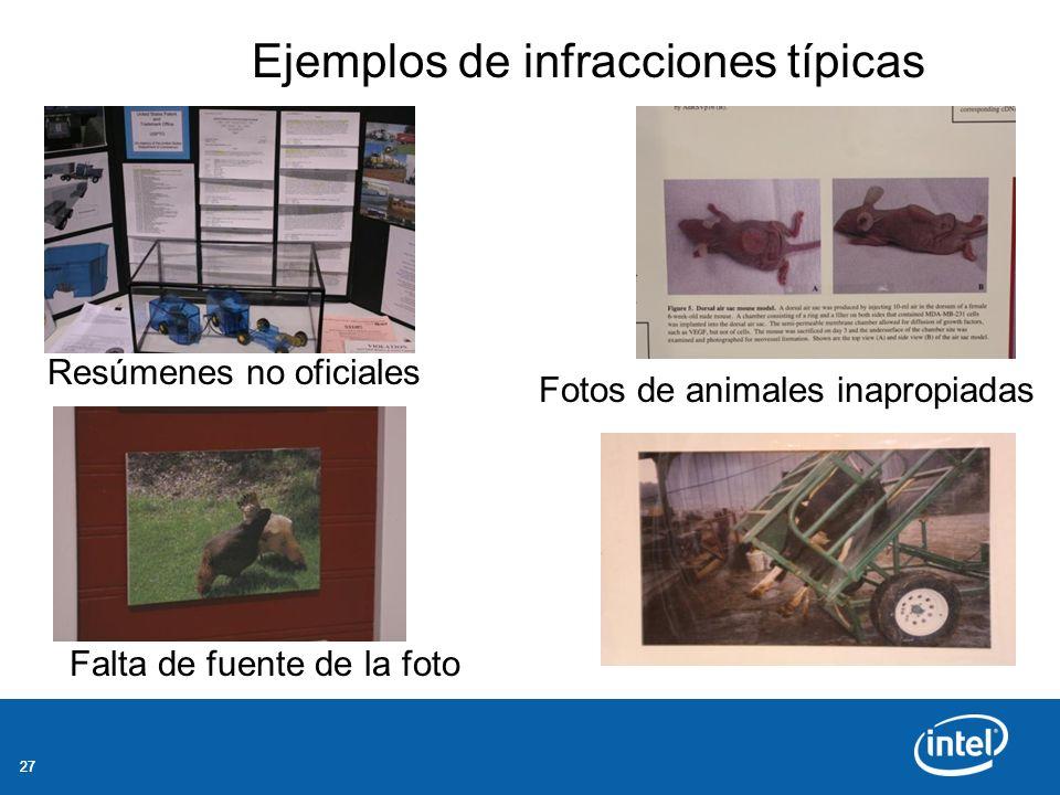 27 Resúmenes no oficiales Fotos de animales inapropiadas Falta de fuente de la foto Ejemplos de infracciones típicas
