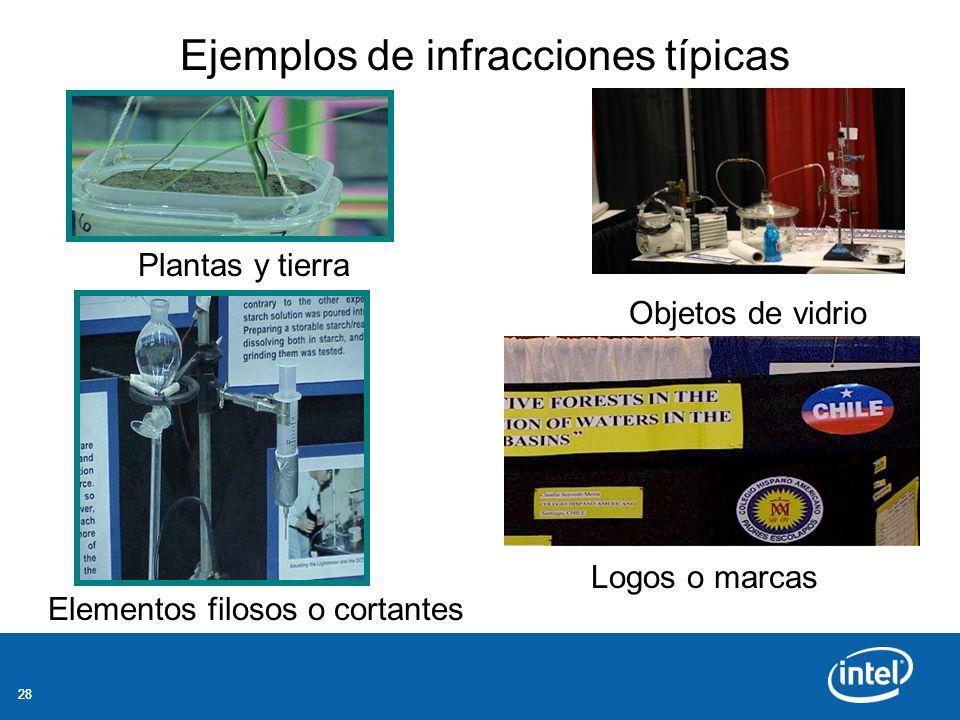 28 Ejemplos de infracciones típicas Plantas y tierra Objetos de vidrio Elementos filosos o cortantes Logos o marcas