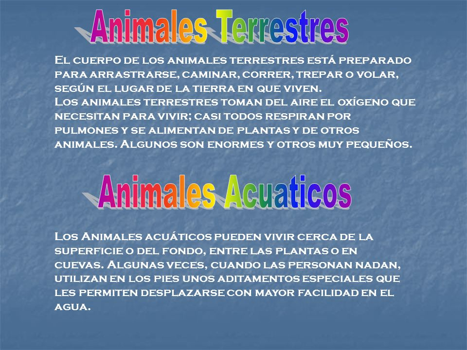 El cuerpo de los animales terrestres está preparado para arrastrarse, caminar, correr, trepar o volar, según el lugar de la tierra en que viven. Los a