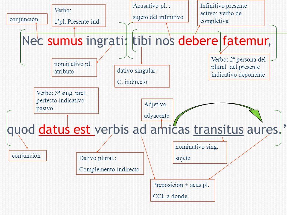 Nec sumus ingrati: tibi nos debere fatemur, quod datus est verbis ad amicas transitus aures.