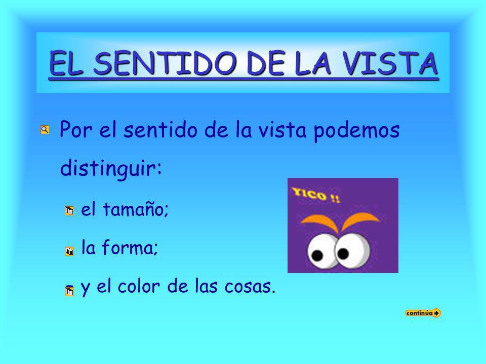 EL SENTIDO DE LA VISTA Por el sentido de la vista podemos distinguir: –el tamaño; –la forma; –y el color de las cosas.