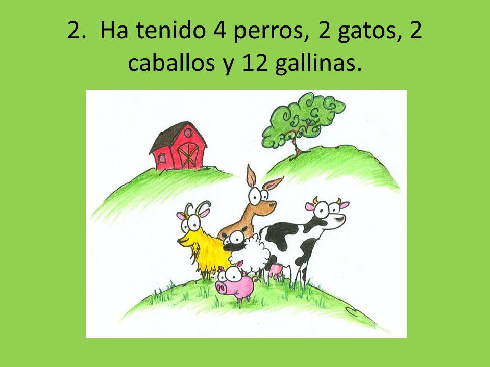 2. Ha tenido 4 perros, 2 gatos, 2 caballos y 12 gallinas.