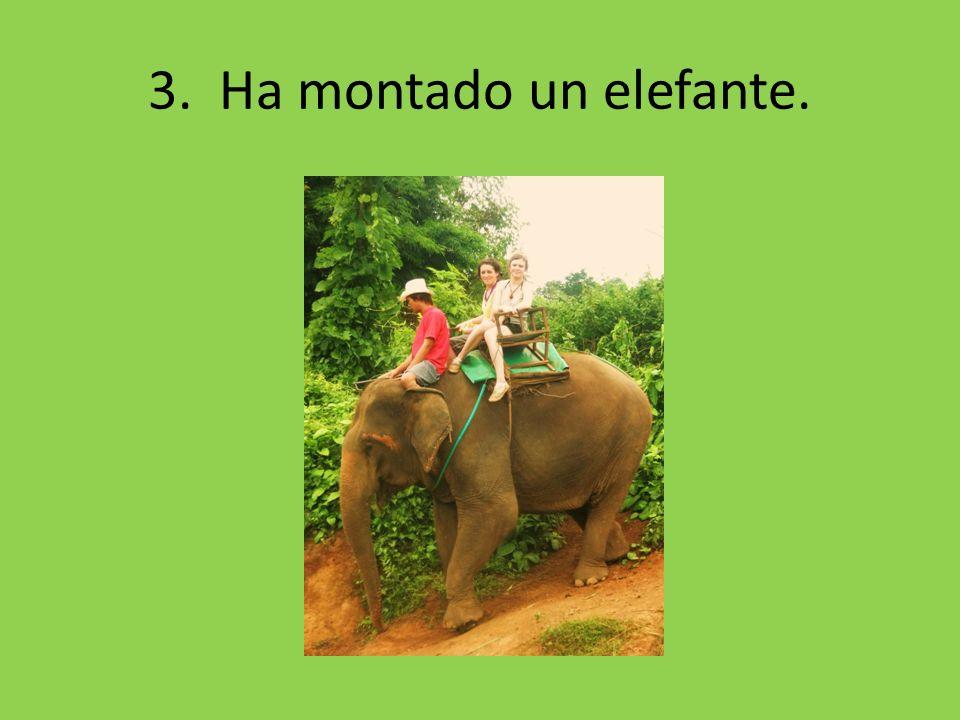 3. Ha montado un elefante.