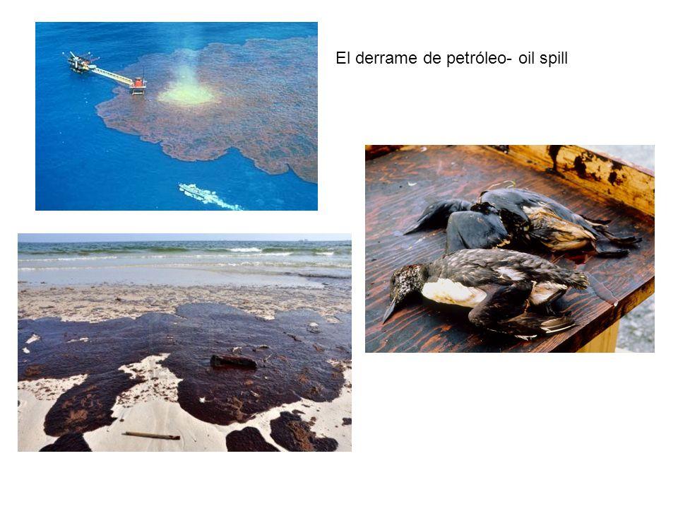 El derrame de petróleo- oil spill