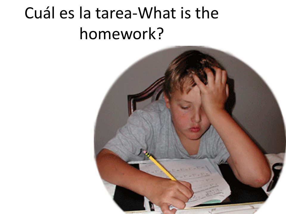 Cuál es la tarea-What is the homework?