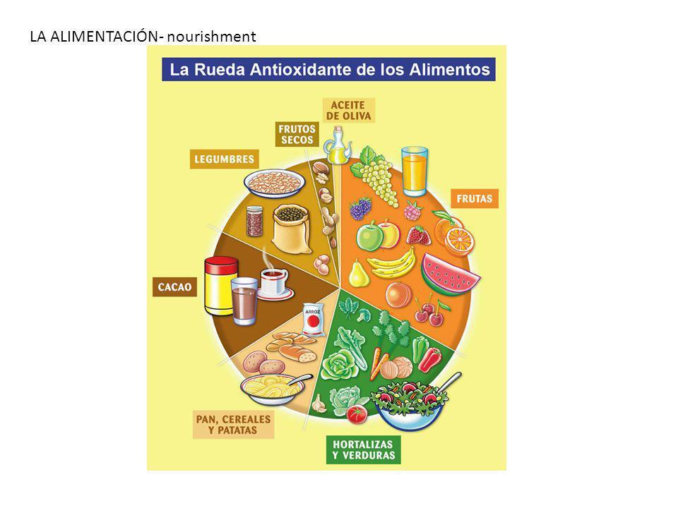LA ALIMENTACIÓN- nourishment